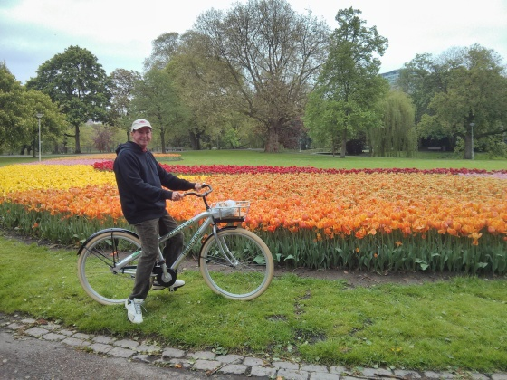 My dad with the tulips