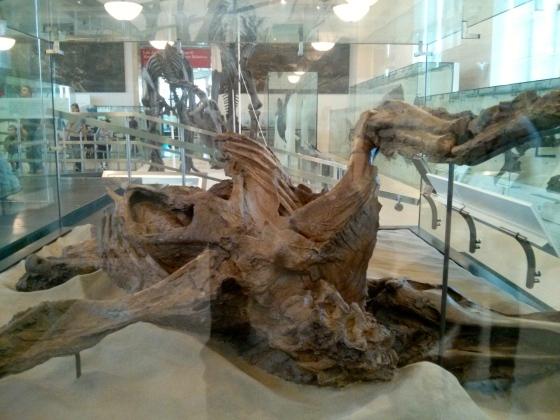 Dinosaur mummy!