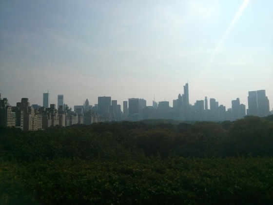 View from the top of the Met