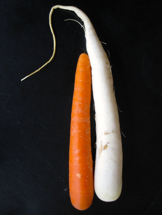 Carrot and daikon ready to be pickled