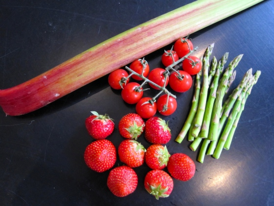 A few of the ingredients for the Maple Tossed Rhubarb & Puy Salad