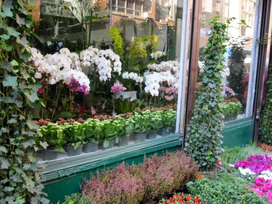 Chelsea Flower Market