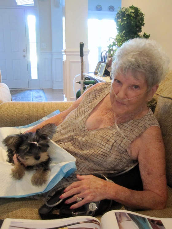 Granny and Angel