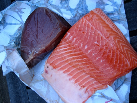Tuna and salmon for the non meat-lovers