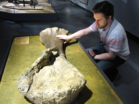 Touching a dinosaur arm bone