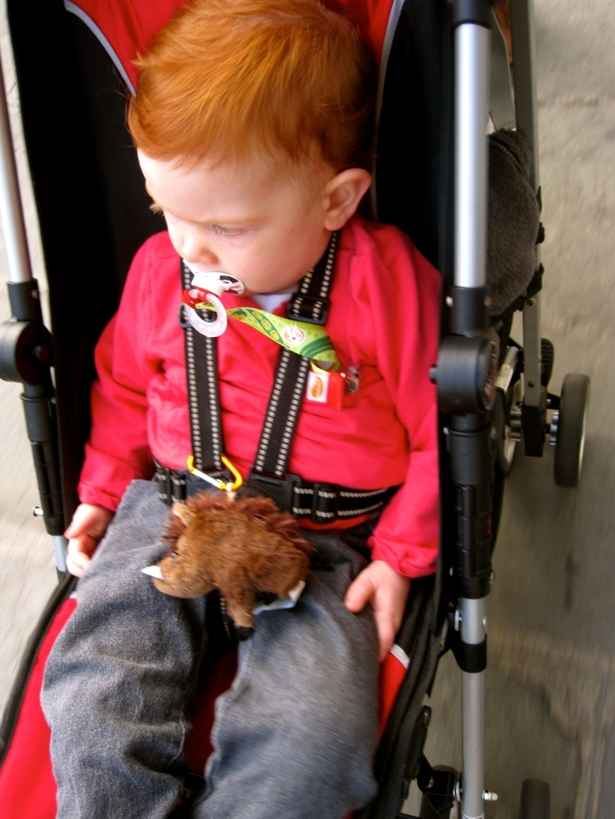 Edward with his wild boar stuffed animal